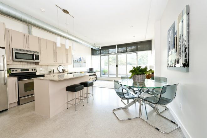 elenathewise120900021.jpg - kitchen, dining and living room of apartment - artwork from photographer portfolio